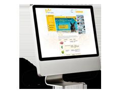 Diseño y desarrollo web avanzado