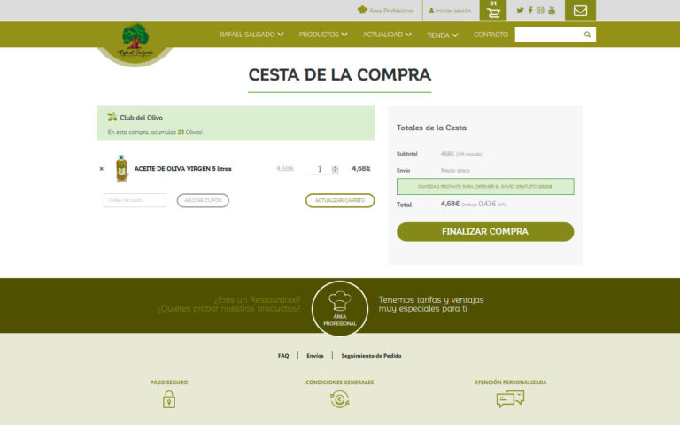 comercio electrónico, marketing online y página web corporativa