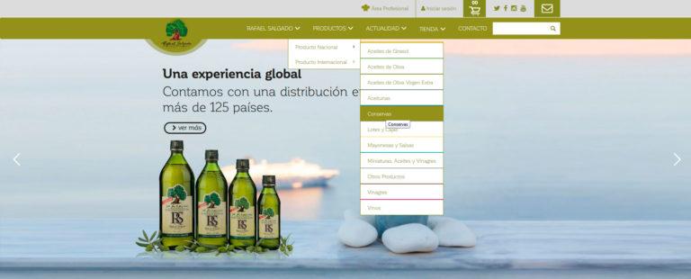 comercio electrónico, marketing online y página web corporativa